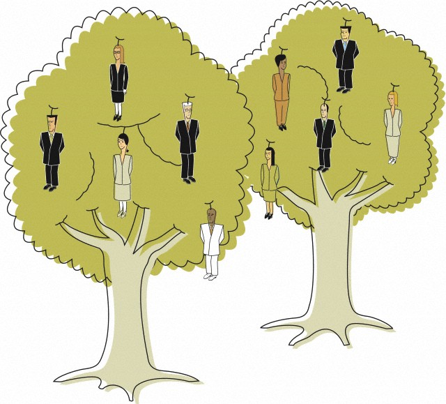 Постройте дерево вашей карьеры