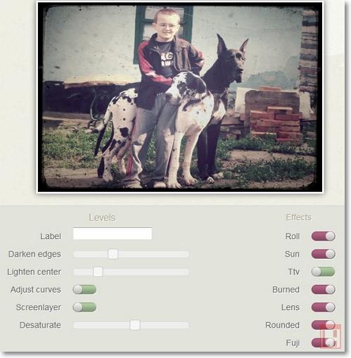 винтажное фото, мальчик с двумя собаками