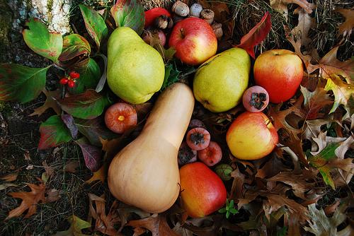 Как правильно хранить осенние фрукты