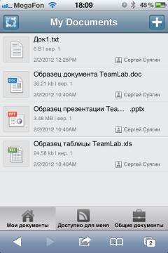 Мобильное управление рабочими процессами с помощью TeamLab