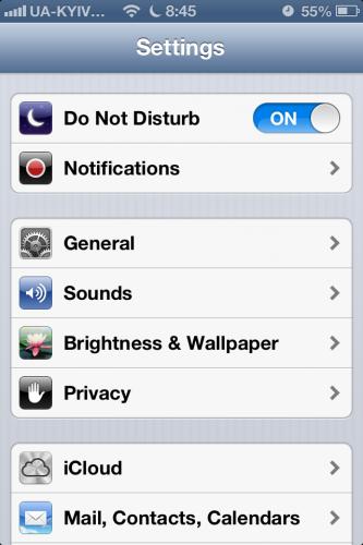 как включить функцию Do Not Disturb на iPhone