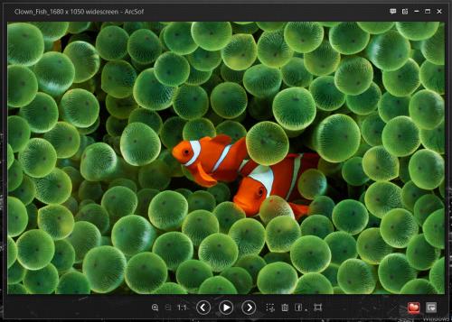 программа для просмотра raw изображений: