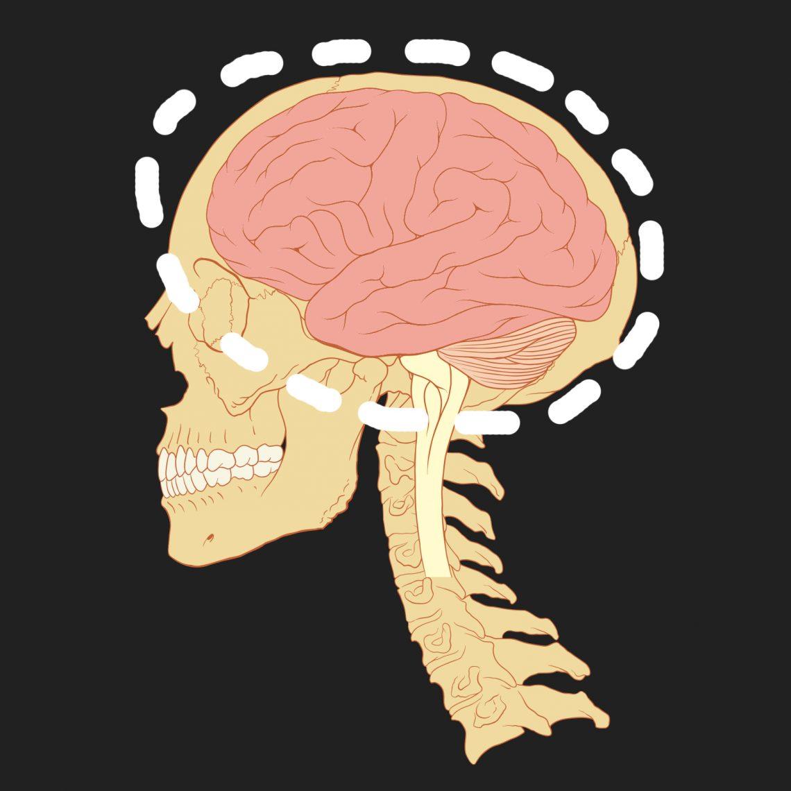ВИДЕО: Татьяна Черниговская о том, чего мы не знаем о мозге
