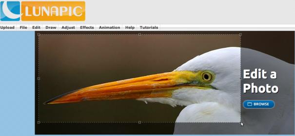 Lunapic - быстрый онлайн-редактор для ваших фотоснимков