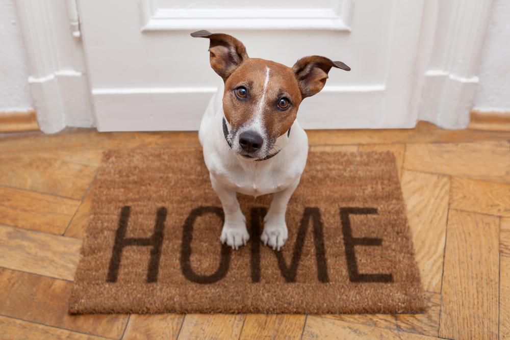 15 лайфхаков для вашего дома