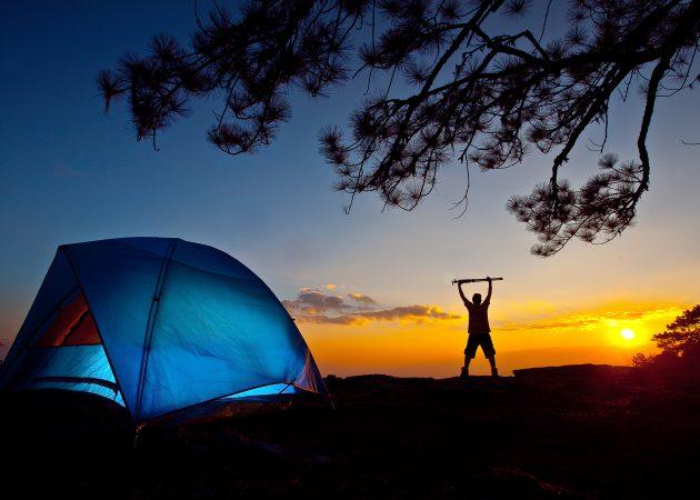 11 уроков выживания в диких условиях