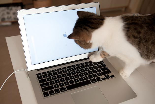 Новичкам: 7 полезных советов по работе в OS X