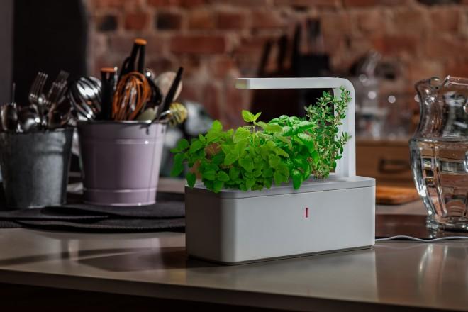 press-photo-Smart-Herb-Garden-by-Click-Grow-660x440