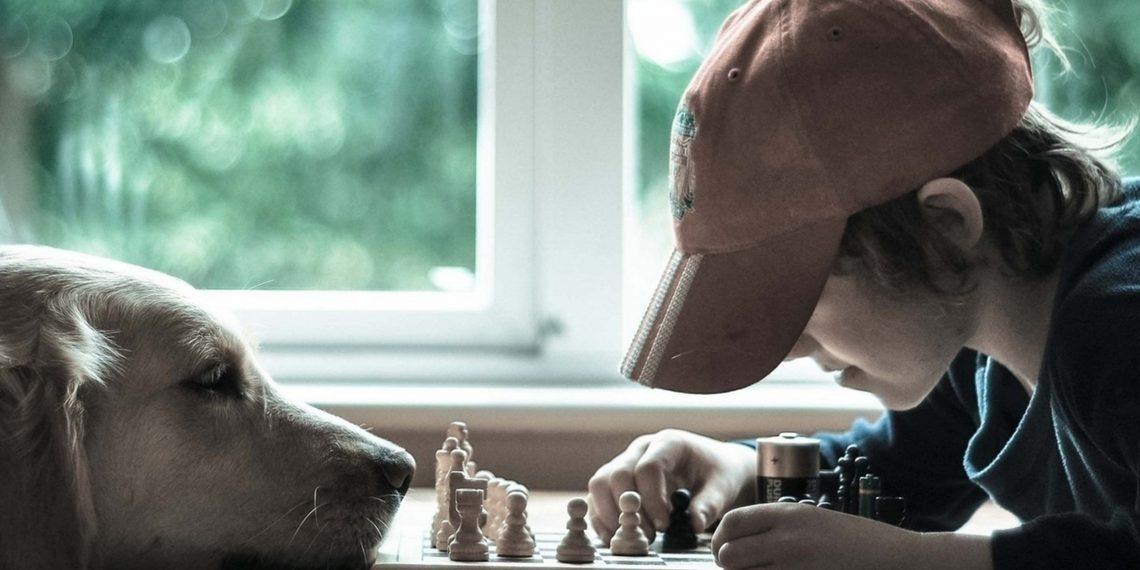 Можно ли гарантированно вырастить из ребёнка гения