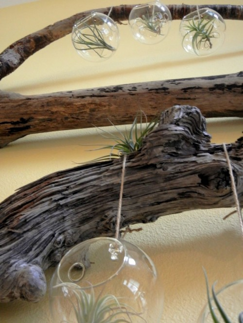 cool-driftwood-crafts-for-home-decor11