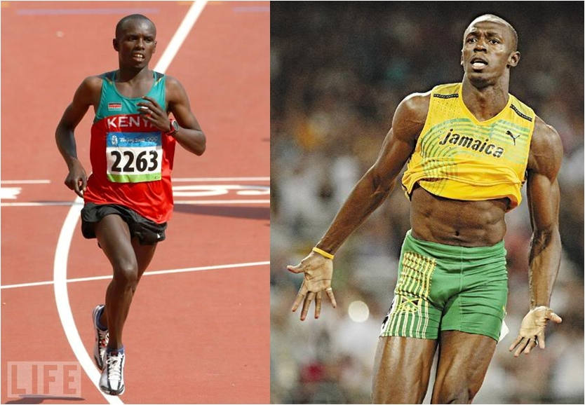 Почему спринтер и марафонец выглядят совсем по-разному?