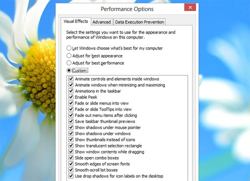 performance-options