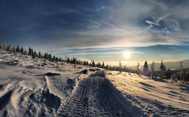 winter-sun-nature