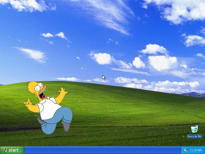 Почему они используют Windows XP и что нам с этим делать?