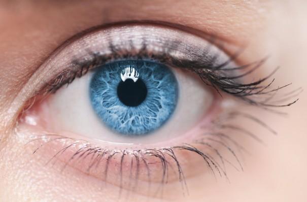 ИНФОГРАФИКА: Продукты, полезные для ваших глаз