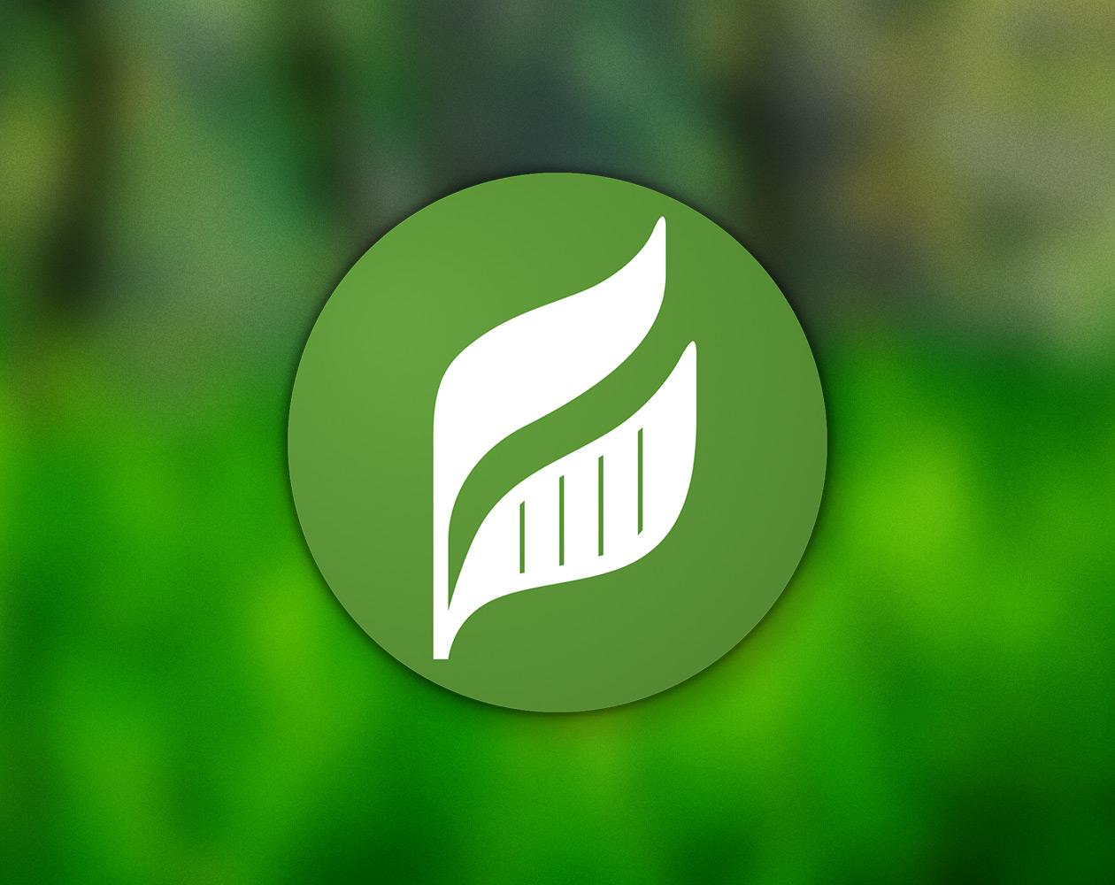 Leafnote для OS X: удобное и минималистичное приложение для заметок