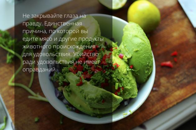 вегетарианство гуакамоле