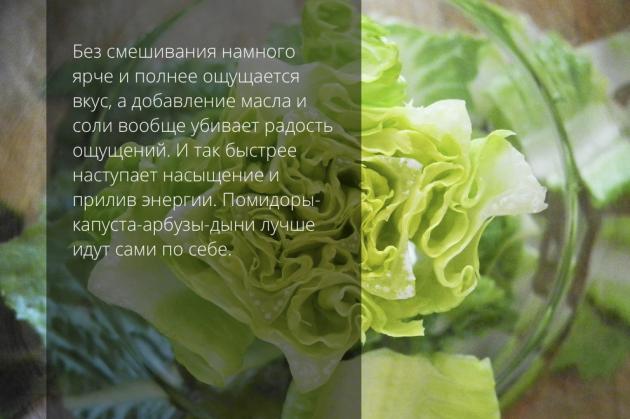 вегетарианство капуста