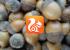 UC Browser для Android — всё, что нужно от мобильного браузера, и ещё AdBlock