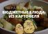 РЕЦЕПТЫ: 6 бюджетных блюд из картофеля