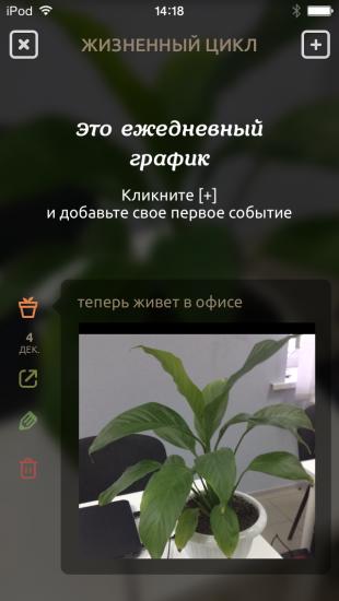 IMG_0638