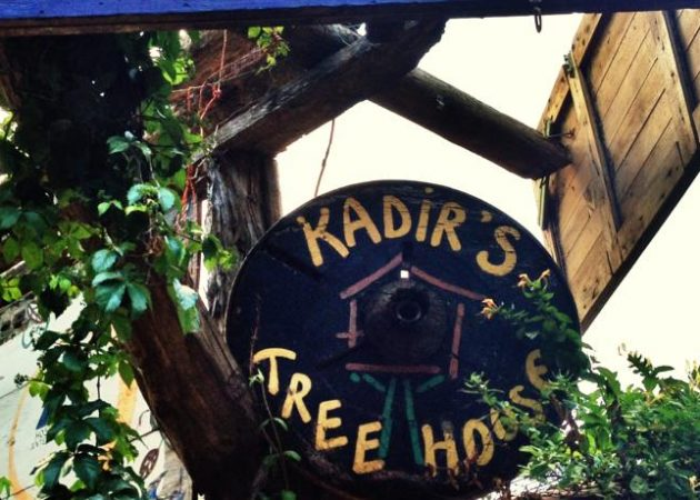 Kadir's Tree House 2