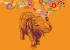 ВИДЕО: Почему у слонов замечательная память