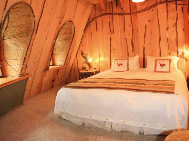 Отель Magic Mountain Hotel расположен в заповедных чилийских лесах