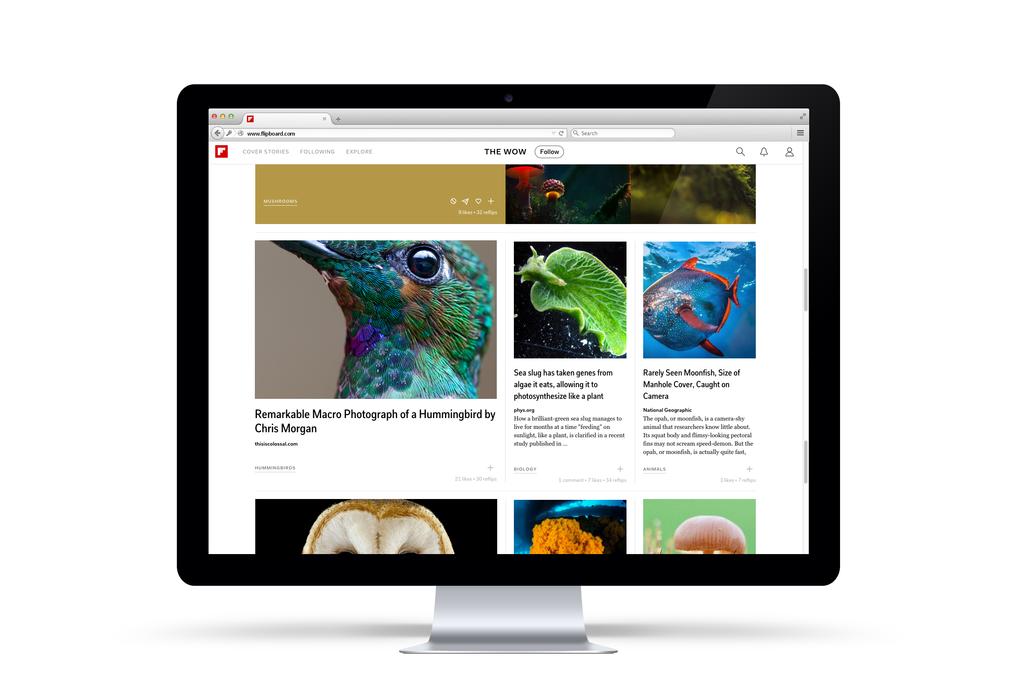 Flipboard выпустил веб-версию своего приложения