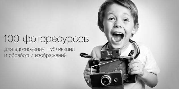 greggsphoto/Shutterstock.com