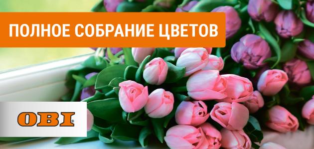 obi.ru