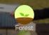 Forest поможет сконцентрироваться на работе и не отвлекаться на смартфон