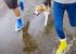 16 лайфхаков для владельцев собак