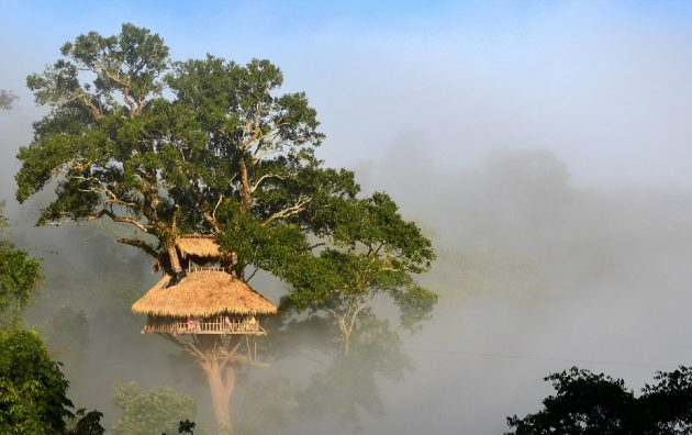 Bokeo Nature Reserve, Laos