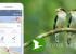 Animal Tracker —приложение, которое в будущем сможет заменить зоопарки