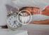 Будильники для Android, которые поднимут с кроватилюбого