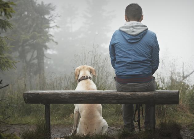 12 способов изменить жизнь для тех, у кого совершенно нет сил