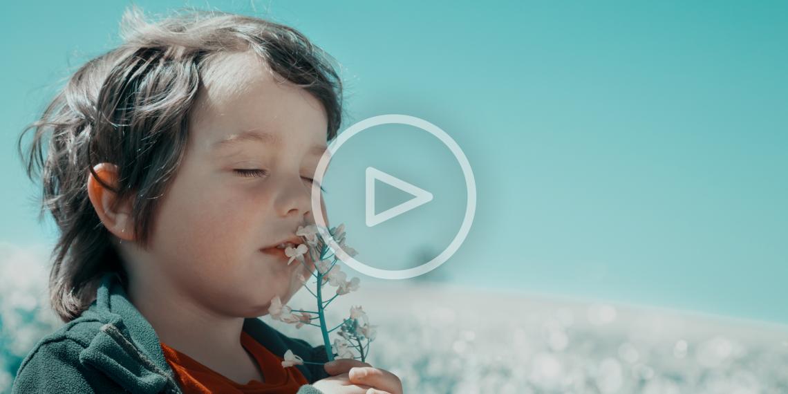 ВИДЕО: Сенсорный жилет и другие необычные способы чувственного познания мира