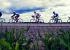 6 советов о том, как подготовить велосипед к рекордному веломарафону