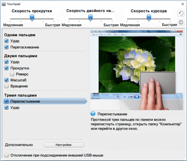 Тачпад Windows 10: свойства