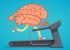 Работают ли Lumosity, Elevate и другие мозговые тренажёры