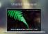 Unsplash Wallpaper — приложение с отличными обоями для OS X