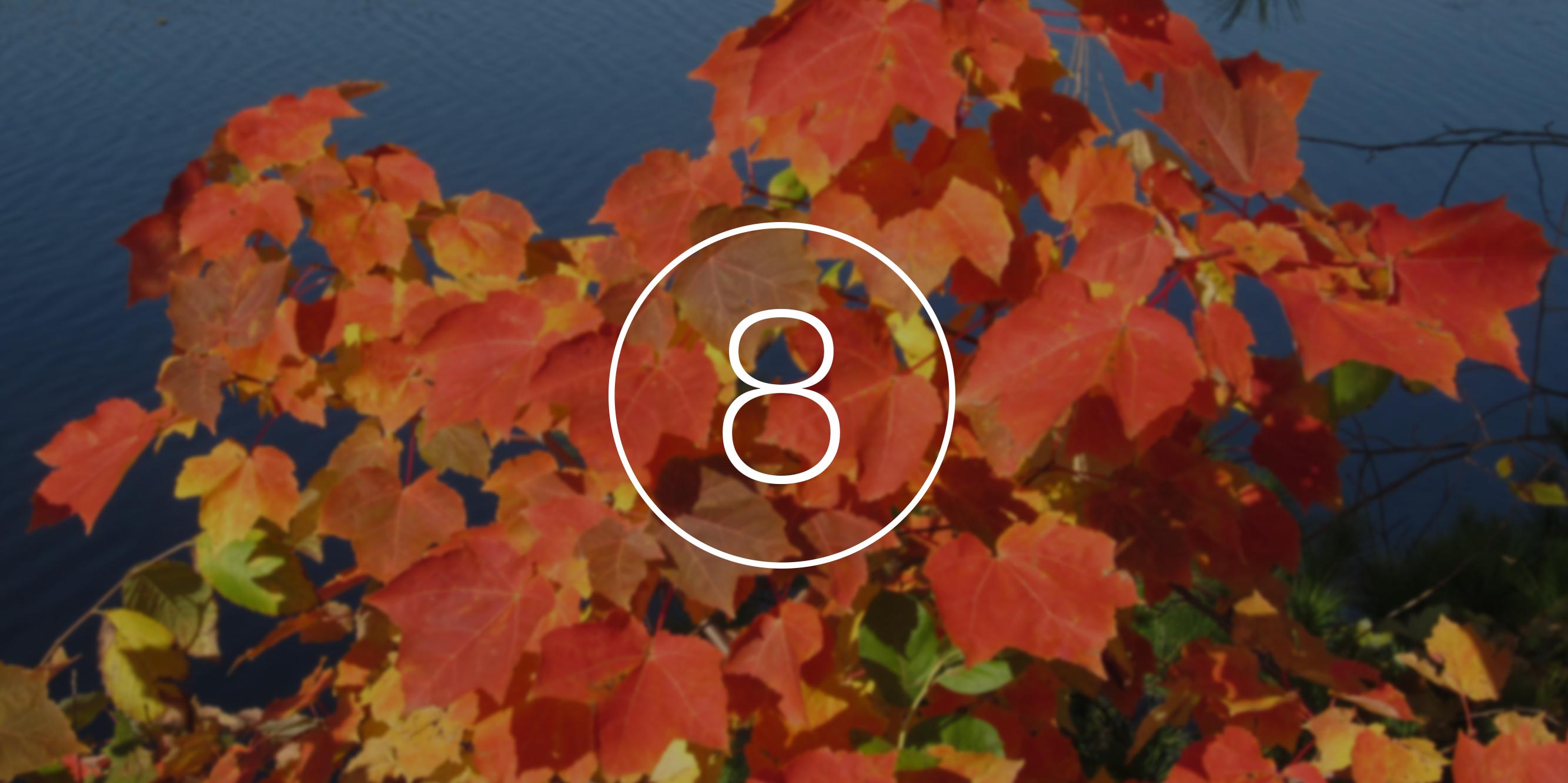 8 новинок, которые Apple представит этой осенью