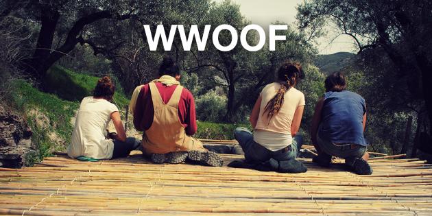 WWOOF даёт возможность поехать волонтёром на ферму в любую страну мира