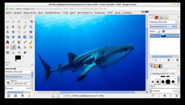 GIMP on rollApp web app