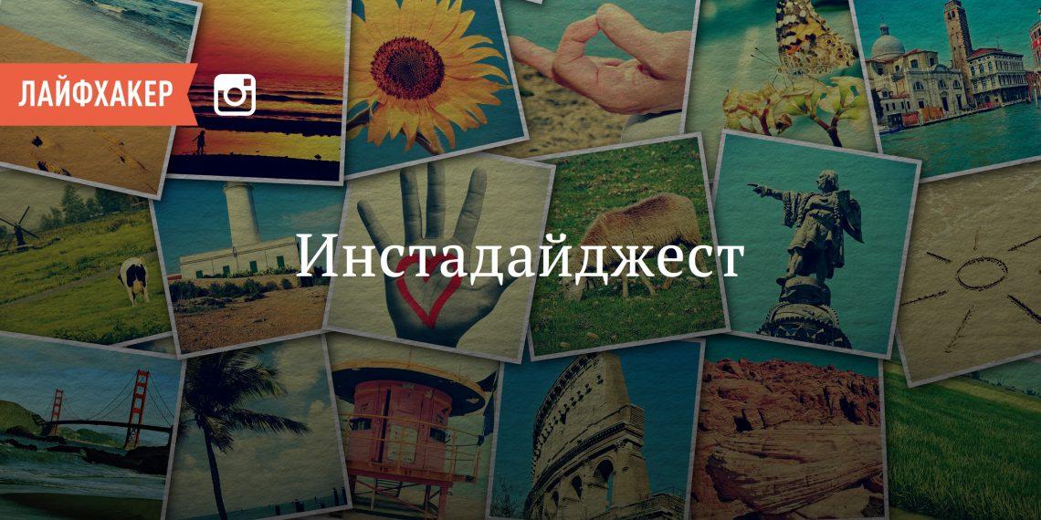 Инстадайджест. Первозданная Россия