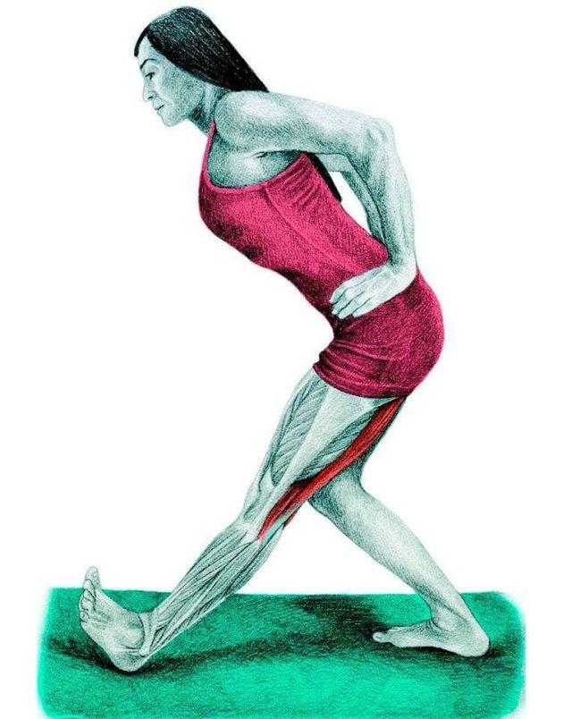 Анатомия стретчинга: наклон к ноге