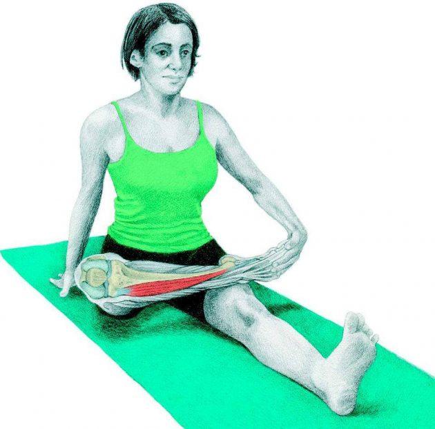 Анатомия стретчинга: поза голубя сидя
