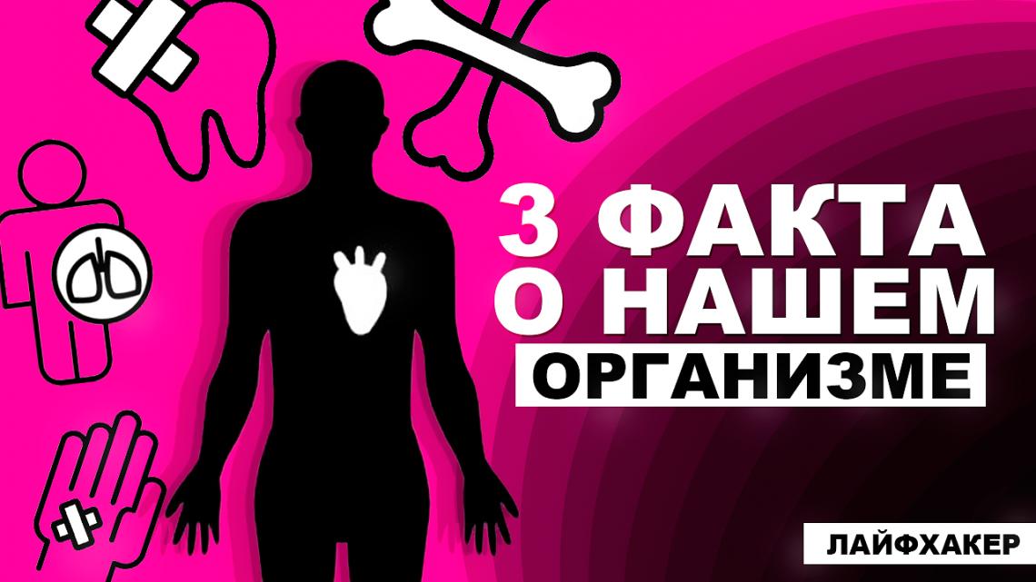 ВИДЕО: 3 удивительных факта о нашем организме