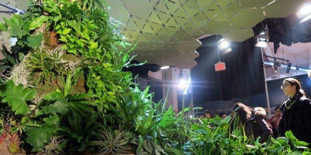 Как будет выглядеть первый в мире подземный парк: искусственные холмы